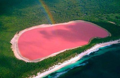 lake-hillier-pink-lake-in-australia-4