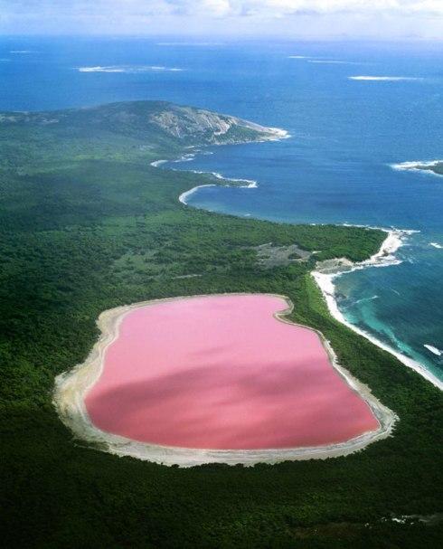 lake-hillier-pink-lake-in-australia-5