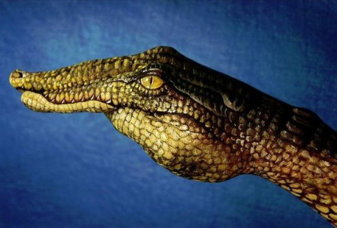 Guido-Daniele-Hand-Artwork-3