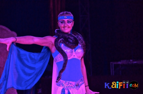 DSC_0177italian circus