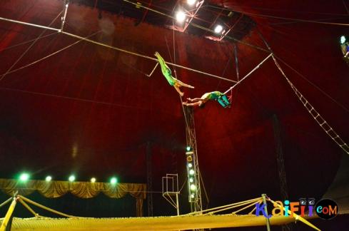 DSC_0296italian circus