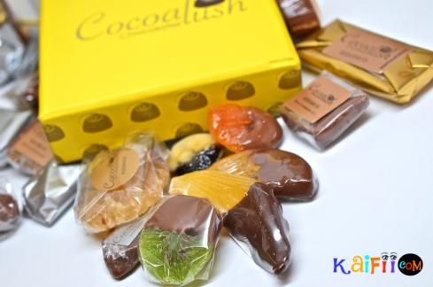 DSC_0540cocoalush