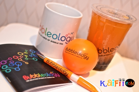 DSC_0003bubbleology