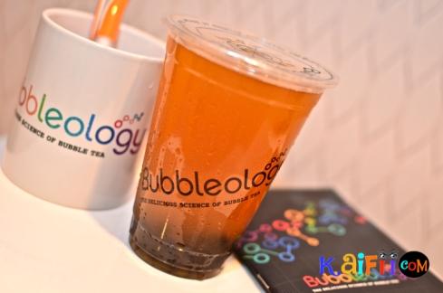 DSC_0009bubbleology
