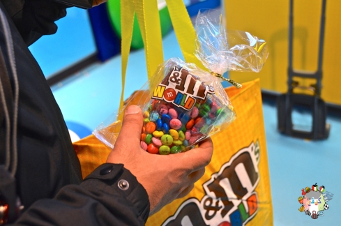 DSC_1321m&ms world